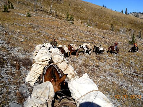 Montana Backcountry Outfitters Pack String Photo